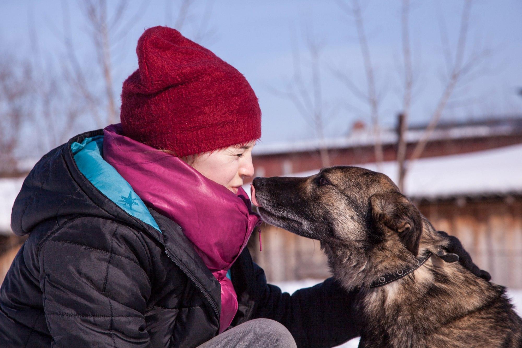 Здоровы вместе: ветеринар о правилах жизни с животными