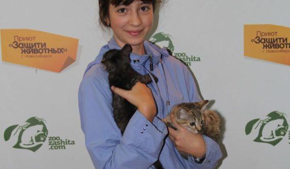 Привет из дома от котят Люси и Муси