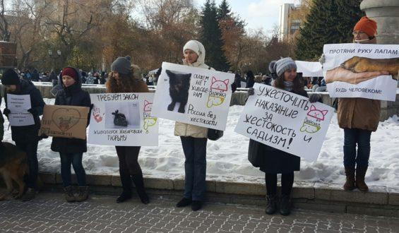 В Новосибирске прошёл митинг «Живодерам не место среди нас»