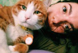 Привет из дома от кота Тимона